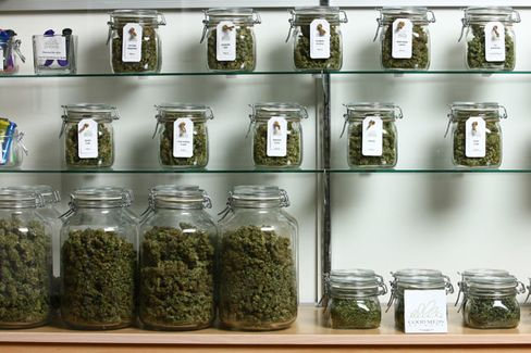 Medical Marijuana Gets Its Day in Court