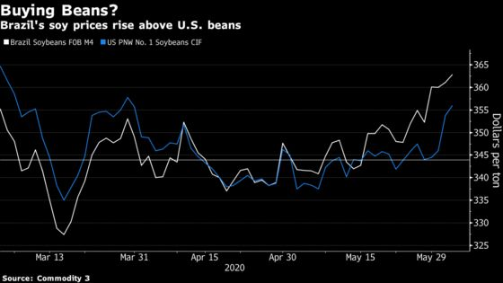 ChinaImporters Likely to Keep Buying U.S. Soybeans, Analyst Says