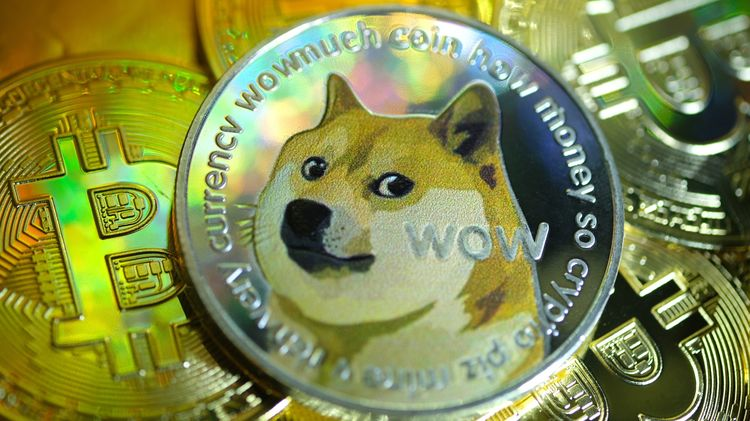 relates to Why Elon Musk Likes Dogecoin