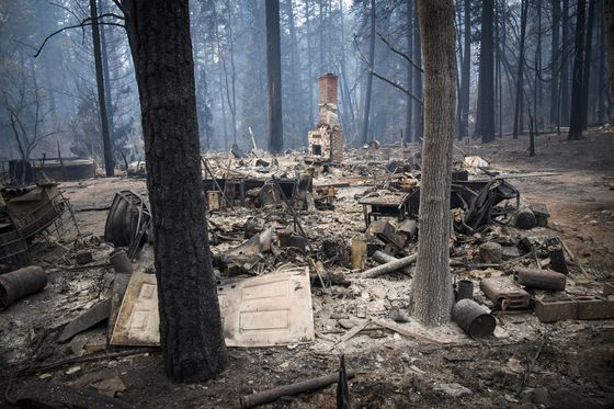 Californians Expected to Rebuild Burnt Homes Despite Continued Fire Risk
