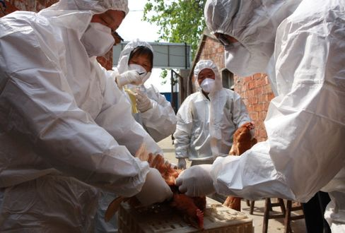 China Premier Li Calls for High Alert on Bird Flu as Cases Rise