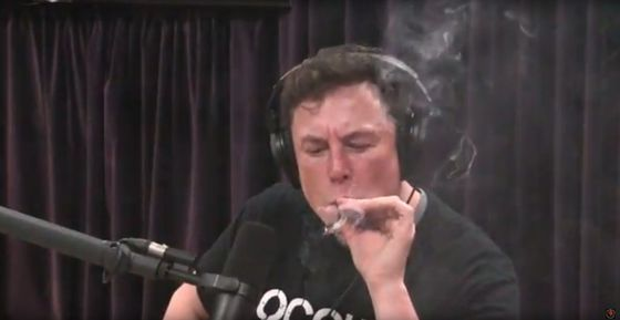 Is Tesla Going Up in Smoke?