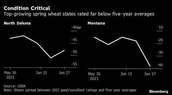 Wild Weather Plagues North America Grain Crops as Demand Surges
