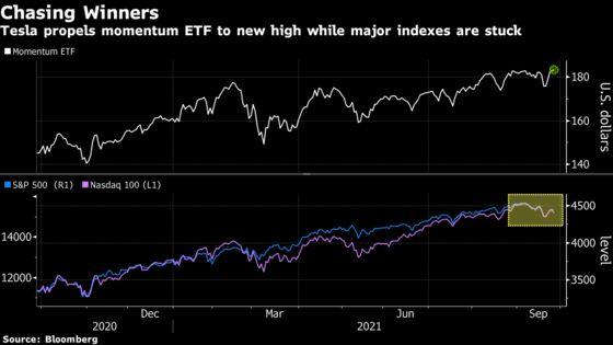Chasing Winners Pays Off as Tesla Propels Momentum ETF to Record