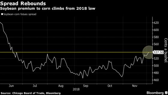 Soybean Rally Gives U.S. Farmers Pause on Possible Shift to Corn