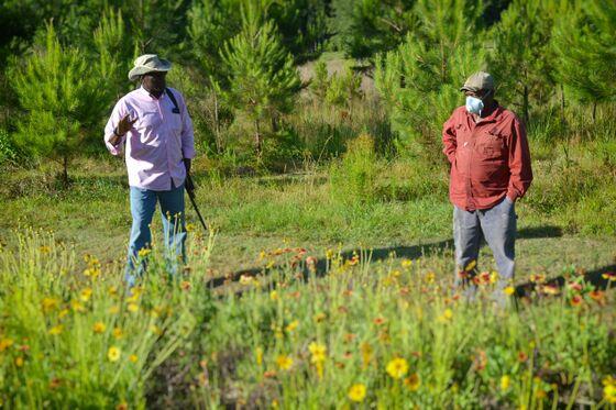 'Jim Crow' Land Ownership Spurs Black Farmers' Appeals to Biden