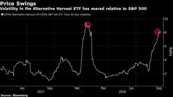 It's Never Been MoreExpensive to Hedge AgainstFallingPot Stocks
