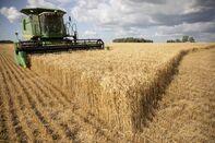 relates to 中国の一部バイヤー、米農産品の関税適用免除を申請