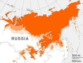 relates to Russia's Thawing Permafrost May Cost Economy $2.3 Billion a Year