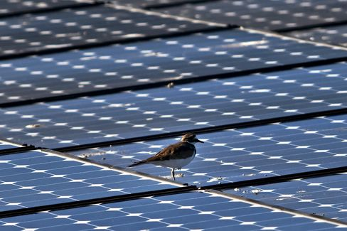 SunPower Corp. solar panels
