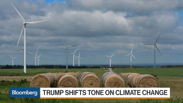 Economics to Keep Wind and Solar Energy Thriving With Trump