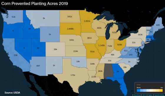 Angry Farmers, Wild Weather and Trade: A Crazy Year for Corn
