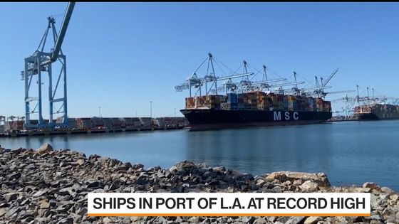 Pandemic Shopping Spree Fuels Rebound in Shipping Emissions