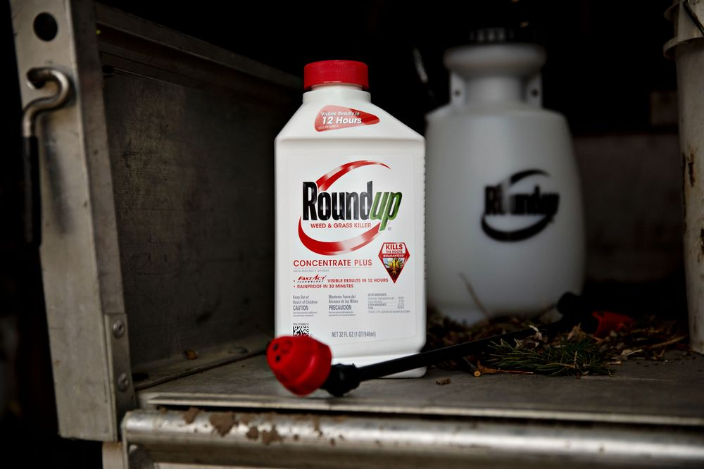 Roundup Cancer Lawsuits: Is a Bayer Settlement Coming? - Bloomberg
