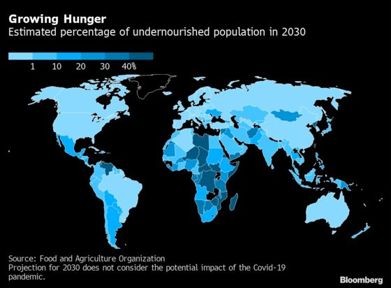 Global Hunger and Obesity Are Worsening Due to Virus Fallout