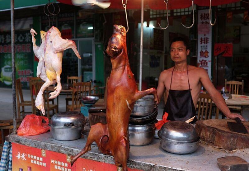 china dog meat ile ilgili görsel sonucu