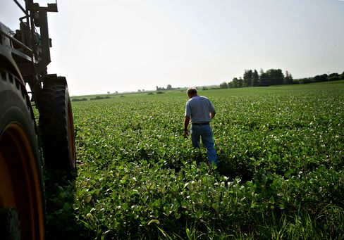 Farmers May See Gains Amid Drought With U.S.-Backed Insurance