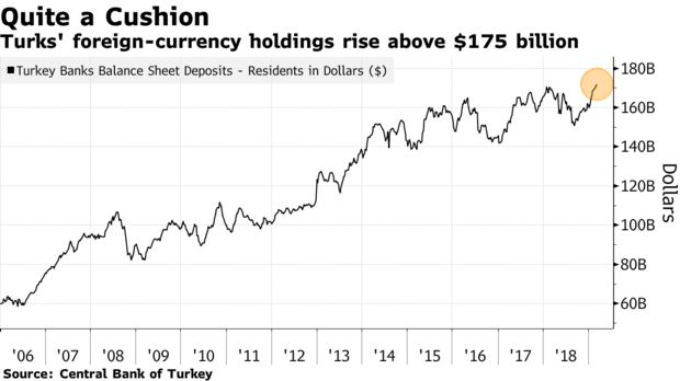 Turks' foreign-currency holdings rise above $175 billion