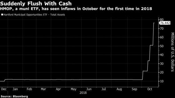 One Investor Bets Big on Tiny Muni ETF Despite Market's Losses