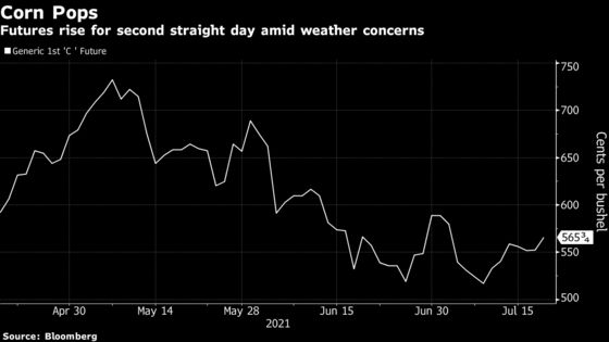 Drought and Heat Lift Corn and Soy Amid Crop Outlook Uncertainty