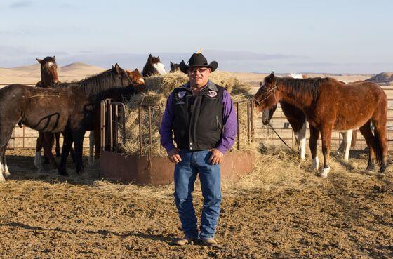 Covid's South Dakota Rampage Created a Failed Experiment in Herd Immunity