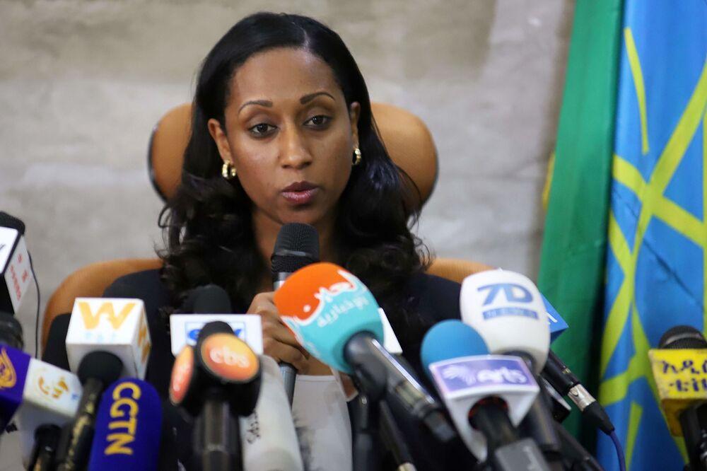 Ethiopia Crash Report: Boeing 737 Max Pilots Followed Procedures