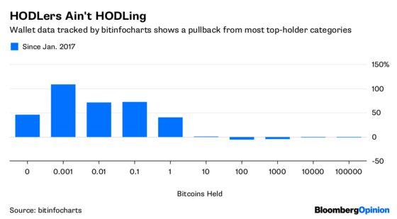 Bitcoin's Greater Fools Go Into Hiding