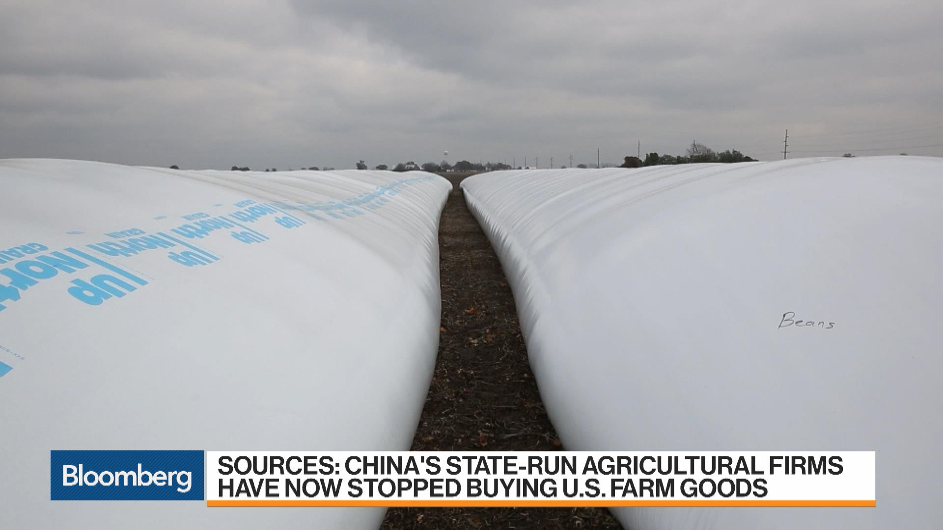 China Halts U S  Agriculture Purchases as Trade War Heats Up