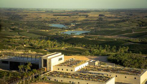 The Bodega Garzón winery.
