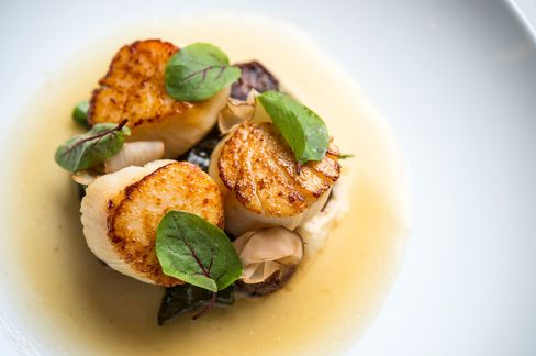 Scallops with sunchokes and sorrel.