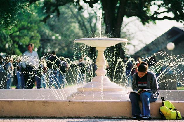 37. Texas A&M University