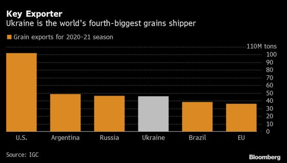 Ukraine's New Farm Chief Vows to Keep Food Exports Flowing