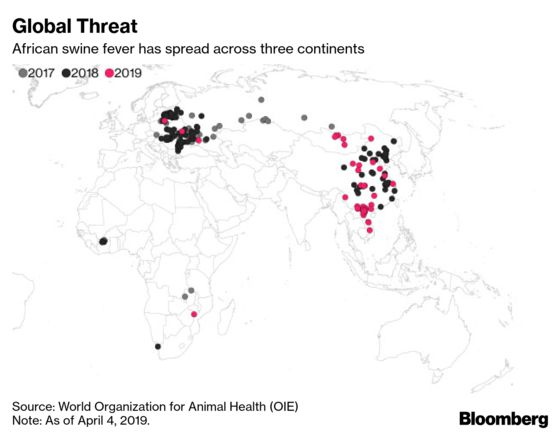 Traders Spooked as African Swine Fever Keeps Spreading
