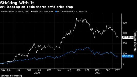 Cathie Wood Buys Tesla Amid Musk Bitcoin Spat, Burry Shorts