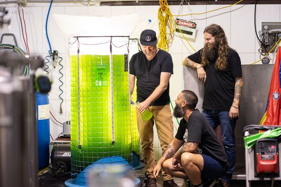 Craft Beer Brewer Feeds CO2 Emissions to Tanks of Hungry Algae