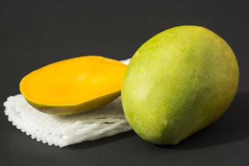 Ripe Kesar mangoes from India, some of the best fruit in the world, are currently in season.