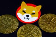 Shiba Inu Cryptocurrency Photo Illustrations
