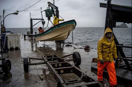 Patagonian Squid Riots Shake South America'sFishing Leader