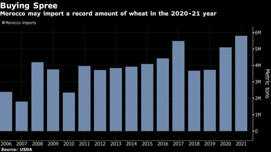 Withering Crops to Make North Africa World's Top Wheat Buyer