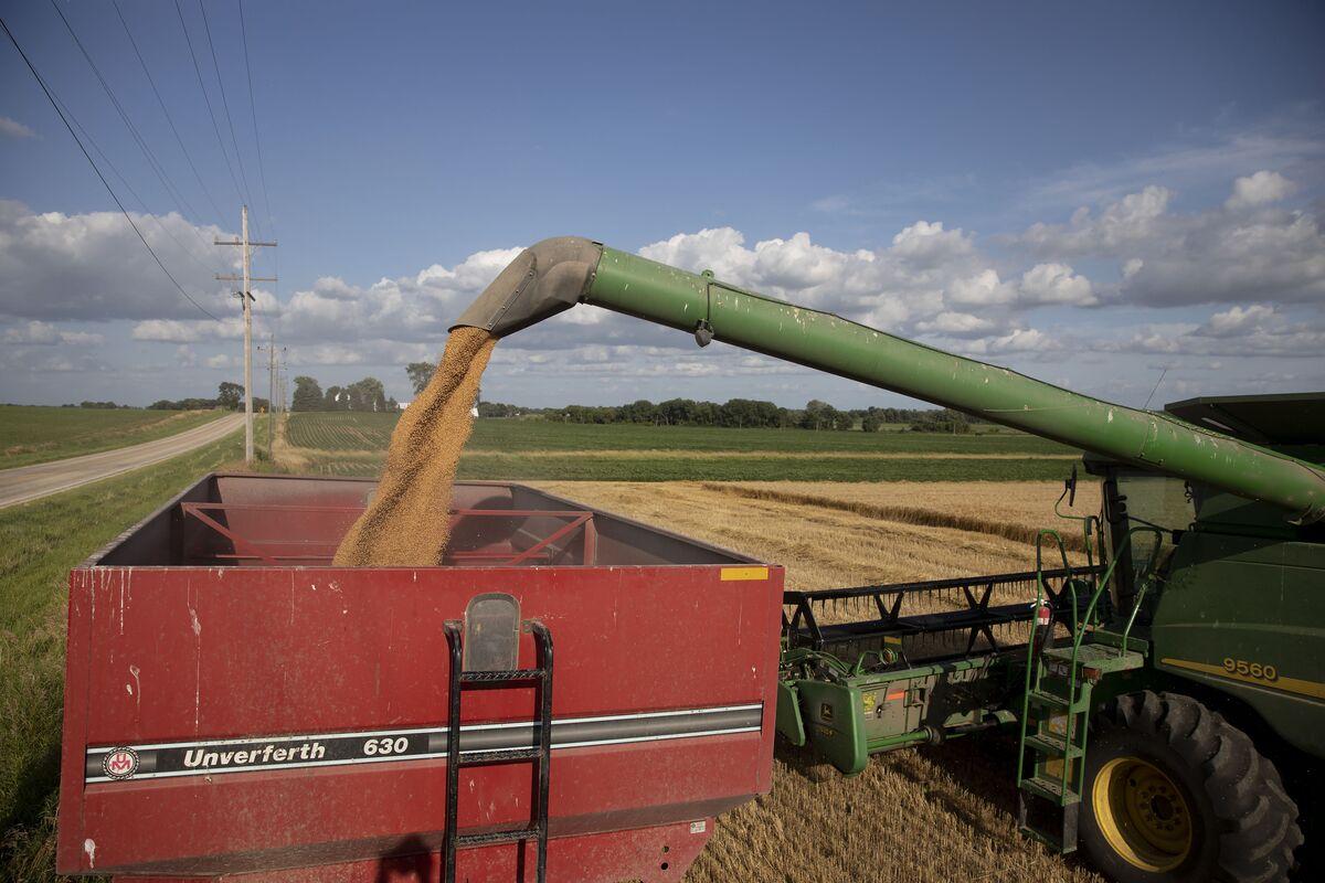 Trump-Abe Trade Deal Helps U.S. Farmers, Forestalls Auto Tariffs