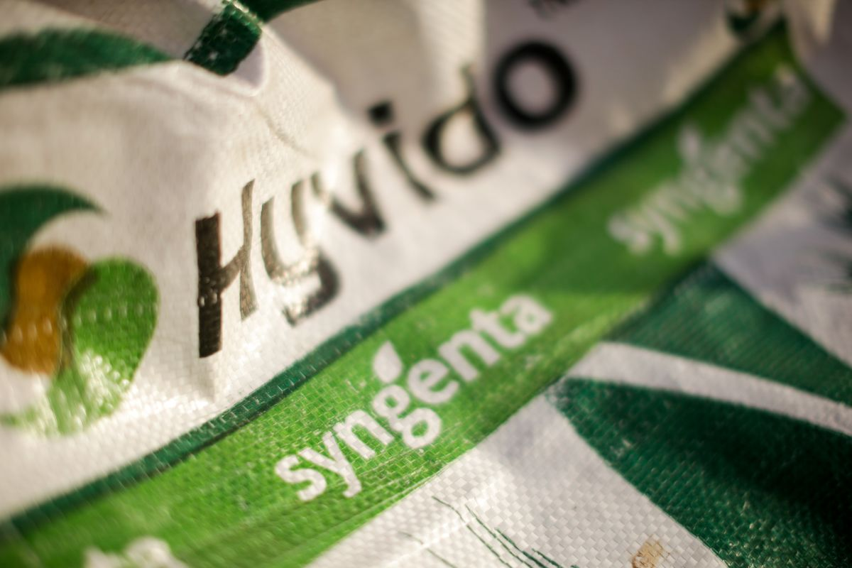 Syngenta Starts Work on World's Biggest Chemical IPO
