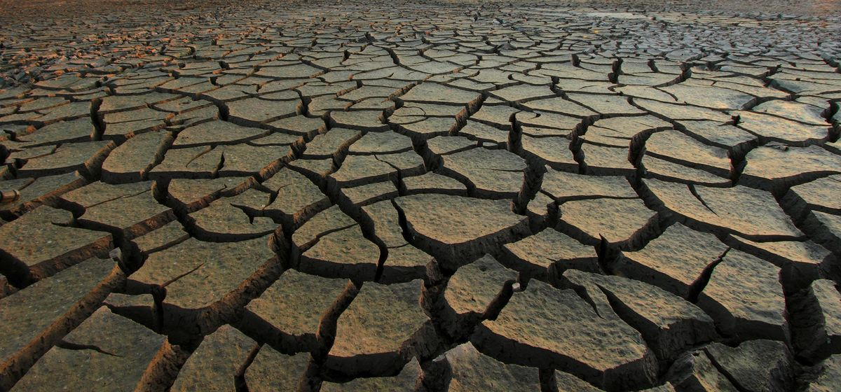 Tunisia Urges Prayers for Rain as Fears of Drought Stalk Economy