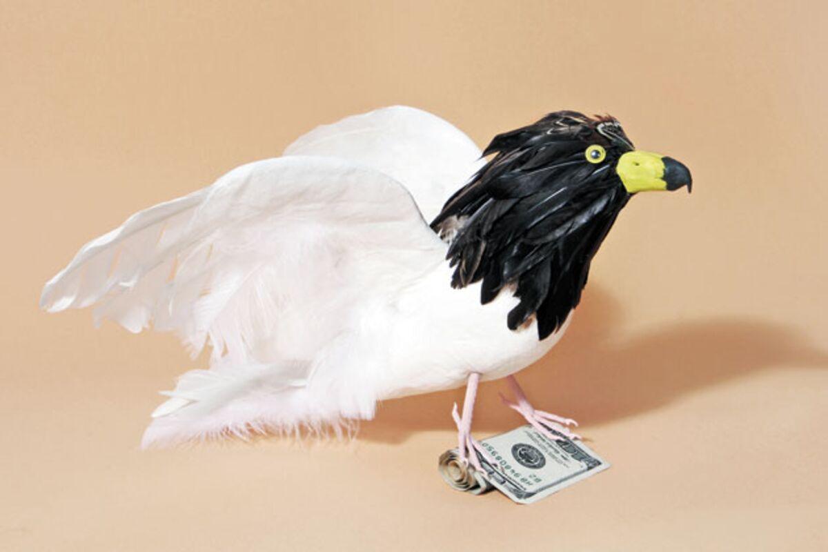 bernanke s heir apparent janet yellen a bird of a different feather bloomberg bernanke s heir apparent janet yellen