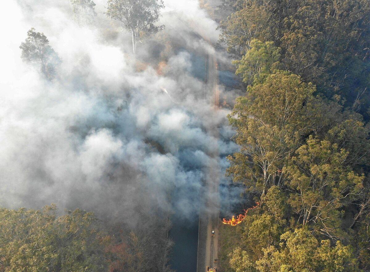 Wildfires Destroy 17 Homes in Eastern Australia