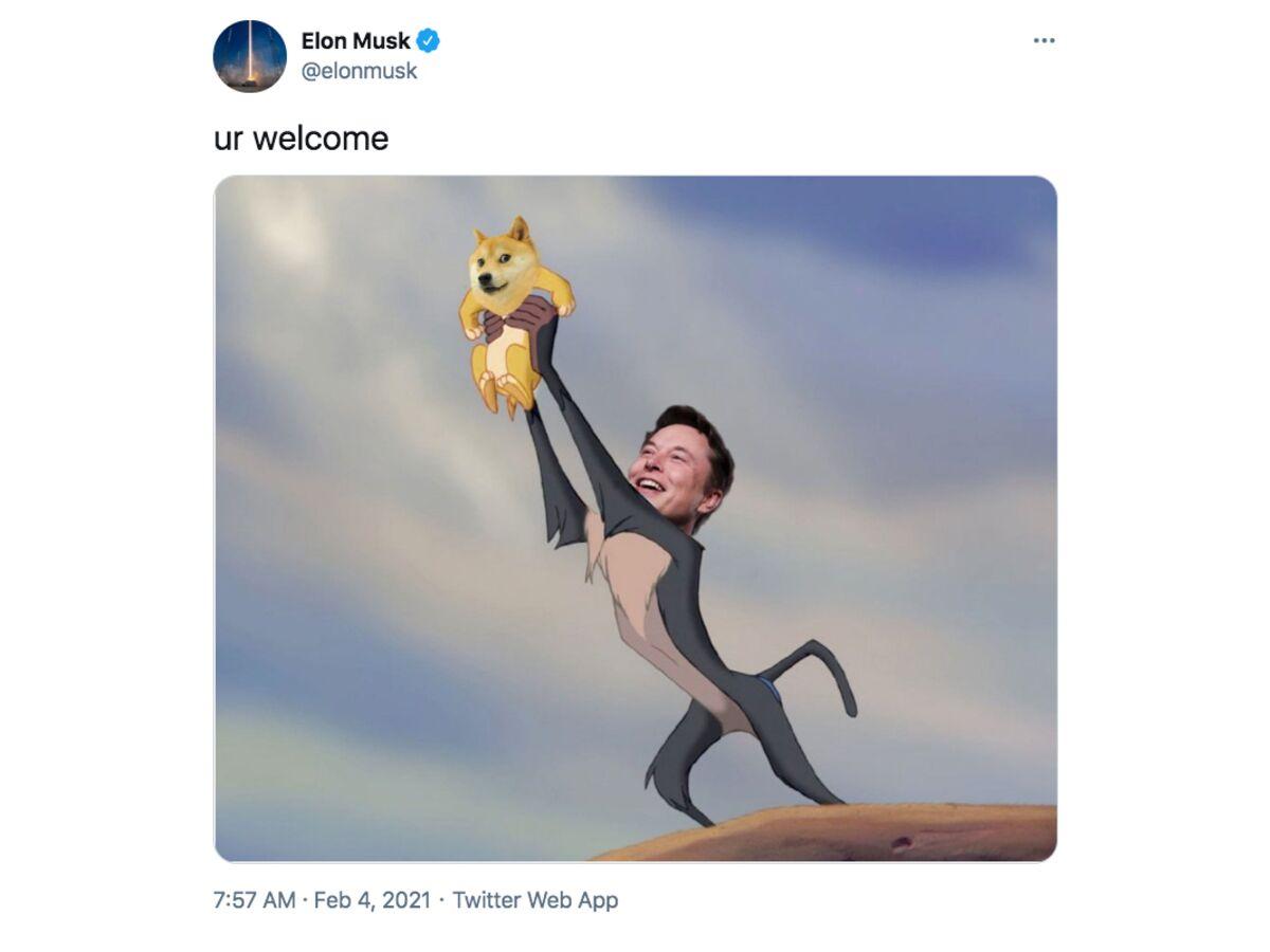 Elon Musk's Devotion to the Bitcoin BTC USD Cryptocurrency Price ...