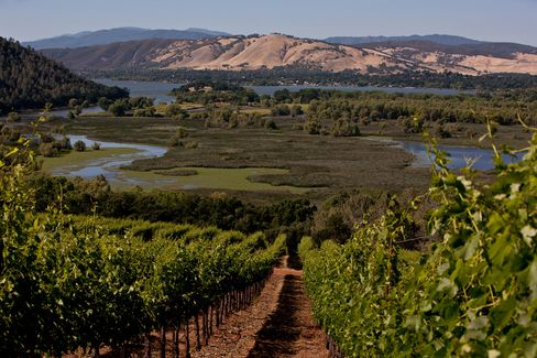 In the past decade, a growing number of boutique producers have been drawn to the area's high elevations and volcanic soils, ideal for high-quality cabernet and sauvignon blanc. Pictured: Vigilance Winery, overlooking Clear Lake, Calif.