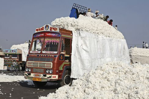 Record Cotton Harvest Seen Cutting Prices for Gap