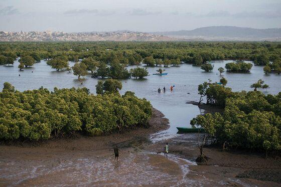 Preserving Kenya's Sunken Treasure