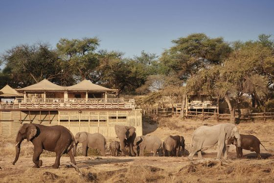 Tented Camps Are Fast Becoming the World's Best Resorts