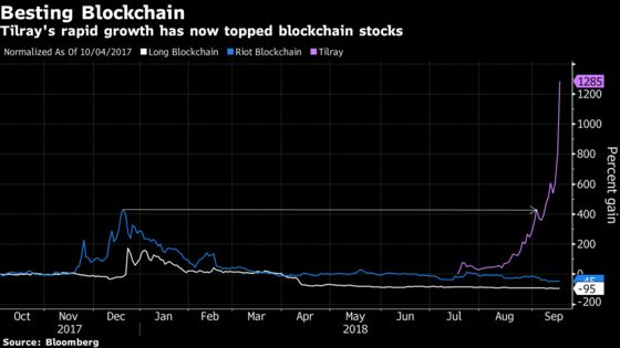 The Hype Around Pot Stocks Is Catching Up to the Crypto Craze